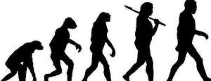 evolucion1-2--644x250